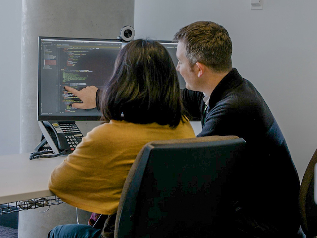 Two professionals looking at computer